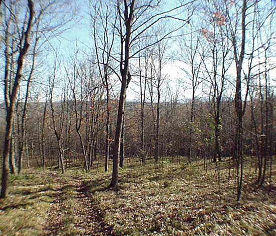 62 Acres of Land from DC Realty