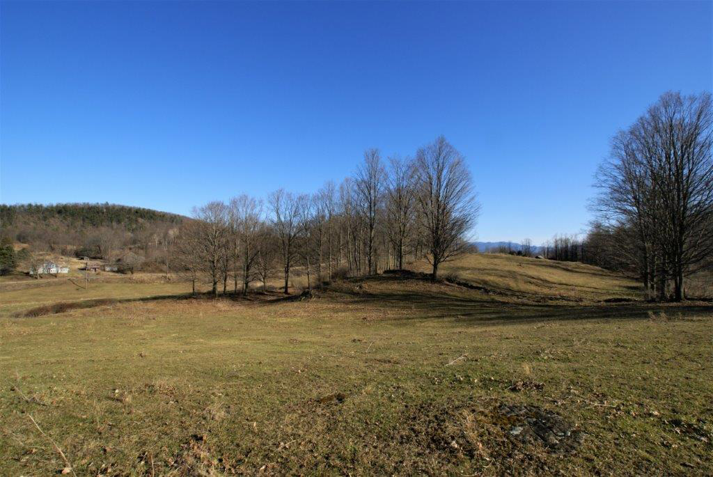 Braymer's Mountain Farm Views